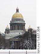 Купить «Санкт-Петербург, Исаакиевский собор», эксклюзивное фото № 1637304, снято 22 февраля 2010 г. (c) Дмитрий Неумоин / Фотобанк Лори