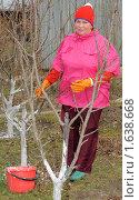 Купить «Женщина белит деревья. Весенние работы на даче», эксклюзивное фото № 1638668, снято 18 апреля 2010 г. (c) Юрий Морозов / Фотобанк Лори