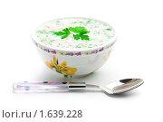 Купить «Тарелка с окрошкой», фото № 1639228, снято 17 апреля 2010 г. (c) Андрей Лавренов / Фотобанк Лори