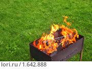 Купить «Мангал на газоне», фото № 1642888, снято 1 августа 2009 г. (c) Losevsky Pavel / Фотобанк Лори