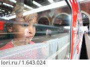 Купить «Девочка смотрит из окна поезда», фото № 1643024, снято 24 июля 2009 г. (c) Losevsky Pavel / Фотобанк Лори