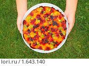 Купить «Фруктовый пирог в руках на фоне зеленой травы», фото № 1643140, снято 1 августа 2009 г. (c) Losevsky Pavel / Фотобанк Лори