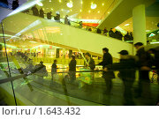 Купить «Люди на эскалаторе в торговом центре», фото № 1643432, снято 28 ноября 2009 г. (c) Losevsky Pavel / Фотобанк Лори