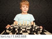 Купить «Мальчик  с шахматами», фото № 1643668, снято 10 ноября 2009 г. (c) Losevsky Pavel / Фотобанк Лори