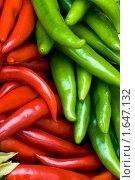 Купить «Красный и зеленый стручковый перец», фото № 1647132, снято 20 апреля 2010 г. (c) Юлия Сайганова / Фотобанк Лори