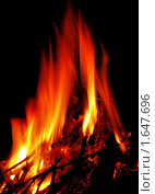 Купить «Огонь», фото № 1647696, снято 27 июня 2009 г. (c) Dina / Фотобанк Лори