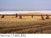 Купить «Хакасский курган», фото № 1661832, снято 26 апреля 2010 г. (c) Игорь Боголюбов / Фотобанк Лори