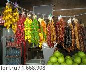 Купить «Чурчхела», фото № 1668908, снято 17 июля 2009 г. (c) Светлана Пирожук / Фотобанк Лори