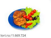 Купить «Котлеты с овощами», фото № 1669724, снято 3 декабря 2009 г. (c) Анна Игонина / Фотобанк Лори