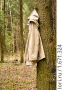 Брезентовая куртка, висящая на дереве. Стоковое фото, фотограф Светлана Силецкая / Фотобанк Лори