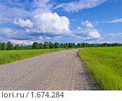 Купить «Дорога в поле», фото № 1674284, снято 15 июля 2008 г. (c) Мирзоянц Андрей / Фотобанк Лори