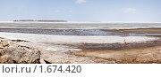 Побережье Обского моря. Стоковое фото, фотограф Нуйкин Всеволод / Фотобанк Лори