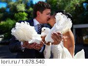 Купить «Поцелуй жениха и невесты», фото № 1678540, снято 3 июля 2009 г. (c) Сергей Рыжов / Фотобанк Лори
