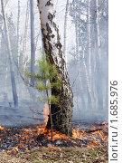 Пожар. Стоковое фото, фотограф Гуляев Роман / Фотобанк Лори