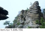 Гора Ай-Петри и сосны на склонах (2009 год). Стоковое фото, фотограф Юрий Брыкайло / Фотобанк Лори