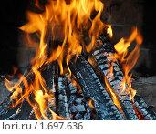 Купить «Горящие дрова в камине», эксклюзивное фото № 1697636, снято 9 мая 2010 г. (c) Юрий Морозов / Фотобанк Лори