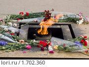 Вечный огонь на Марсовом поле, Санкт-Петербург (2010 год). Стоковое фото, фотограф Алексей Артамонов / Фотобанк Лори