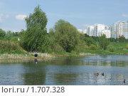Купить «Пенягинский пруд (Митино, Москва)», фото № 1707328, снято 11 мая 2010 г. (c) Валерия Попова / Фотобанк Лори