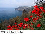 Купить «Мыс Фиолент. Крым», эксклюзивное фото № 1711732, снято 9 мая 2010 г. (c) Роман Рожков / Фотобанк Лори