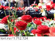 Купить «Розы у вечного огня. Челябинск», фото № 1712724, снято 9 мая 2010 г. (c) Андрей Соловьев / Фотобанк Лори