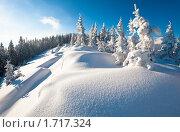 Купить «Зимний горный пейзаж», фото № 1717324, снято 8 марта 2010 г. (c) Юрий Брыкайло / Фотобанк Лори