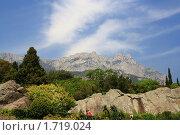 Вид на гору Ай-Петри с северного фасада Воронцовского дворца (2010 год). Стоковое фото, фотограф Кирилл Губа / Фотобанк Лори