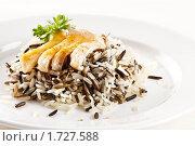 Купить «Порция риса с рыбой», фото № 1727588, снято 12 мая 2010 г. (c) Лисовская Наталья / Фотобанк Лори