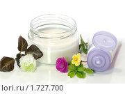 Купить «Косметический крем», фото № 1727700, снято 12 апреля 2010 г. (c) Елена Жучкова / Фотобанк Лори