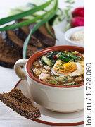 Купить «Вегетарианская окрошка на квасе», фото № 1728060, снято 12 мая 2010 г. (c) Лисовская Наталья / Фотобанк Лори