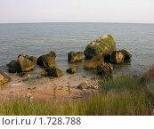 Купить «Скалистый берег азовского моря в Крыму», фото № 1728788, снято 19 июля 2009 г. (c) Марина Бандуркина / Фотобанк Лори