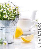 Купить «Травяной чай», фото № 1731400, снято 17 сентября 2009 г. (c) Наталия Кленова / Фотобанк Лори
