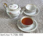 Купить «Чай», фото № 1738180, снято 16 марта 2010 г. (c) Татьяна Чепикова / Фотобанк Лори