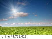 Купить «Бескрайнее поле пшеницы», фото № 1738428, снято 23 мая 2010 г. (c) Михаил Коханчиков / Фотобанк Лори