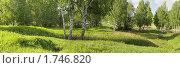 Летний пейзаж, фото № 1746820, снято 19 августа 2017 г. (c) Юрий Бельмесов / Фотобанк Лори