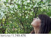 Купить «Цветение», фото № 1749476, снято 16 мая 2010 г. (c) Александр Кокарев / Фотобанк Лори