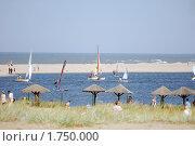 Купить «Лето в Янтарном», эксклюзивное фото № 1750000, снято 16 августа 2009 г. (c) Svet / Фотобанк Лори