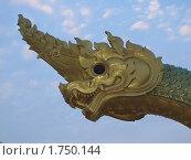 Китайский золотой дракон (2010 год). Стоковое фото, фотограф Сергей Тарасов / Фотобанк Лори