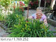 Купить «Женщина обнимает большой куст лилейников», эксклюзивное фото № 1769252, снято 13 июня 2010 г. (c) Анна Мартынова / Фотобанк Лори