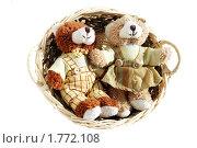 Медведи (2010 год). Редакционное фото, фотограф Ольга Стрейкмане / Фотобанк Лори