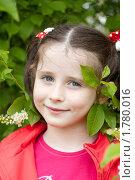 Портрет девочки на фоне цветущей черемухи. Стоковое фото, фотограф Ольга Полякова / Фотобанк Лори