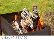 Купить «Горящие дрова в мангале», фото № 1781160, снято 18 июня 2010 г. (c) Маргарита Герм / Фотобанк Лори