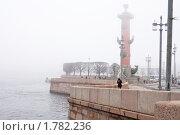 Купить «Туман в Санкт-Петербурге», фото № 1782236, снято 17 апреля 2010 г. (c) Даша Богословская / Фотобанк Лори