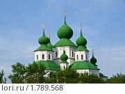 Зелёные купола с золотыми крестами Воскресенского собора в Старочеркасске (2010 год). Стоковое фото, фотограф Борис Панасюк / Фотобанк Лори