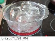 Купить «Стерилизация баночек для варенья», фото № 1791704, снято 23 июня 2010 г. (c) Олеся Сарычева / Фотобанк Лори
