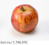 Купить «Яблоко сорта Ред Делишес», эксклюзивное фото № 1796976, снято 16 июня 2010 г. (c) Александр Щепин / Фотобанк Лори