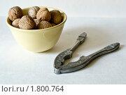 Грецкие орехи. Стоковое фото, фотограф Денис Петров / Фотобанк Лори