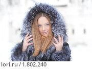 Купить «Портрет девушки в шубе», фото № 1802240, снято 15 января 2010 г. (c) Андрей Батурин / Фотобанк Лори