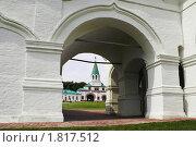 Купить «Москва. Коломенское», фото № 1817512, снято 12 июня 2008 г. (c) Julia Nelson / Фотобанк Лори