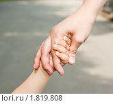 Купить «Руки матери и ребенка», фото № 1819808, снято 5 июля 2010 г. (c) Михаил Павлов / Фотобанк Лори