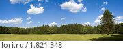 Купить «Живописная лесная поляна в солнечный летний день», фото № 1821348, снято 8 июля 2010 г. (c) NataMint / Фотобанк Лори